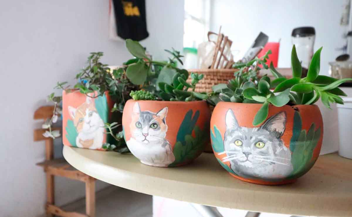 ¿Eres gran amante de los animales? Conoce a la artista mexiquense que pinta a perritos y gatitos en macetas.